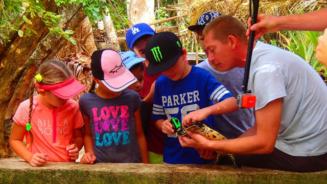 A group of school children shown how to measuring a turtle to see if it meets release size
