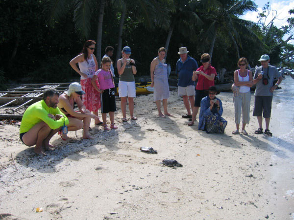 people watching the release of a turtle back in to the open sea